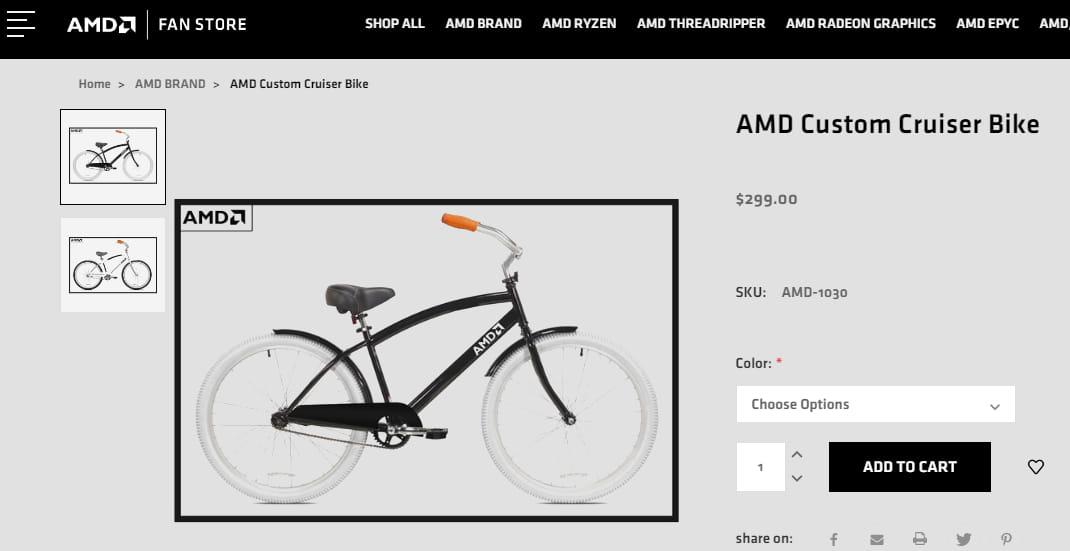 AMD Custom Cruiser Bike